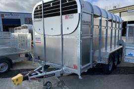 Nugent 14x6 Tri axle cattle Trailers